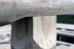 Naturstammfachwerkhaus Drosedow Bild 14