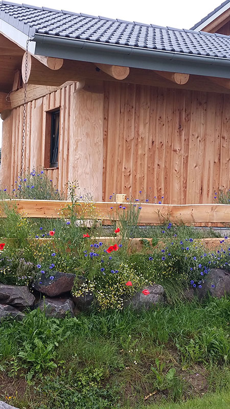 Naturstammhaus Urlaub Edersee Bild 6